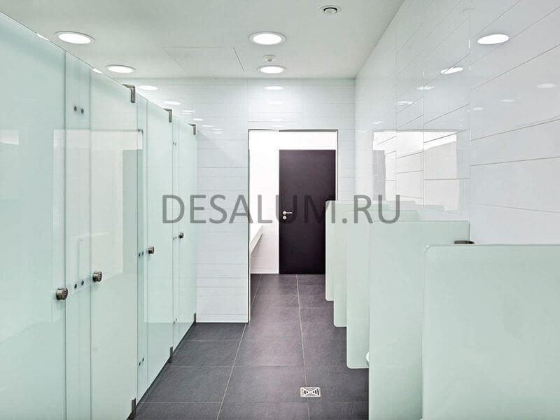 стеклянные сантехнические перегородки desalum